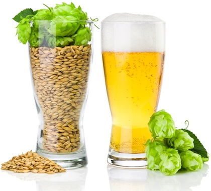 Cerveza Orgánica